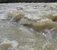 River water levels may be high; GRCA warns residents to be cautious